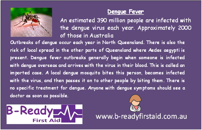 Dengue Fever by B-Ready First Aid