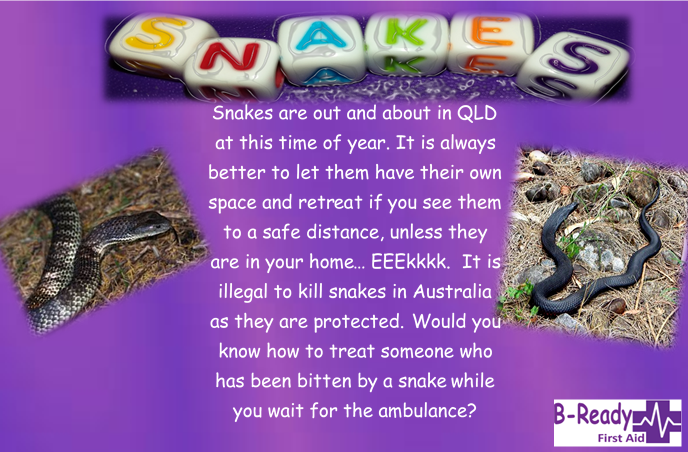 B-Ready First Aid info about snakes in QLD