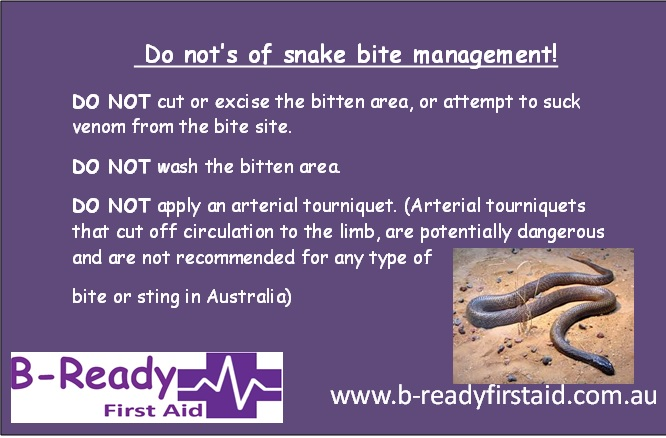Snake bit do not's by B-Ready First Aid